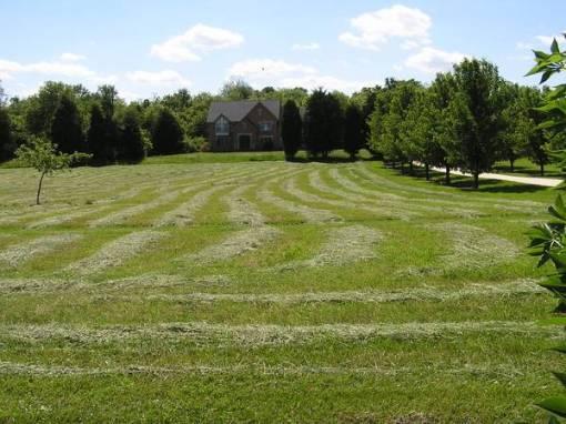 last hay cutting 2013